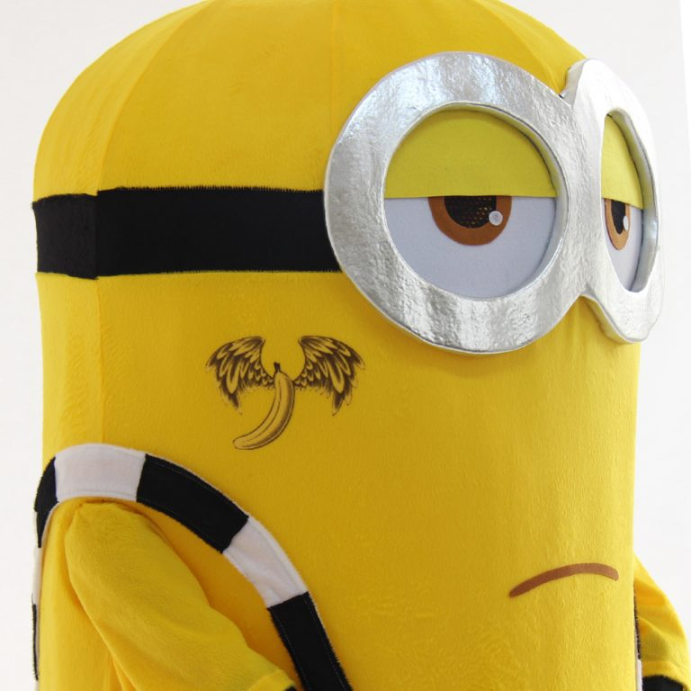 Minions Costume for Adult 5