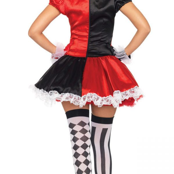 Harley Quinn  Sexy Costume for Halloween 3